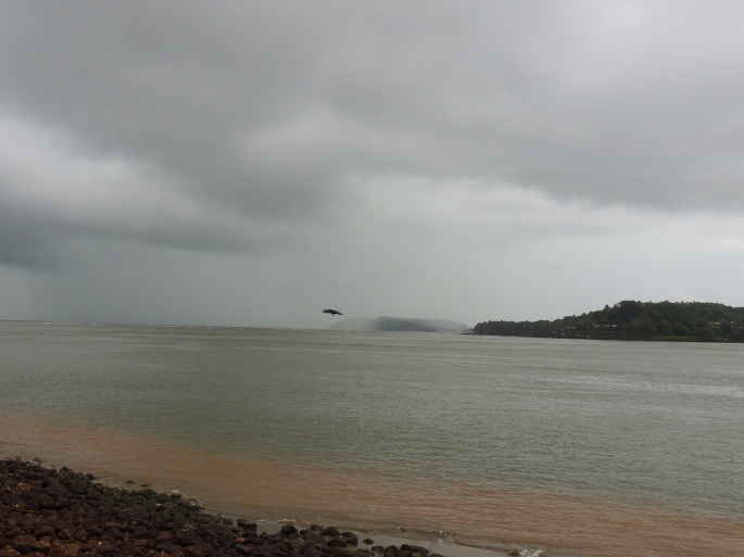 Panaji and Amba Ghat (17)