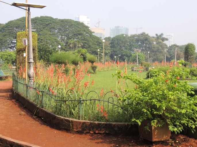 Hanging Gardens (4)