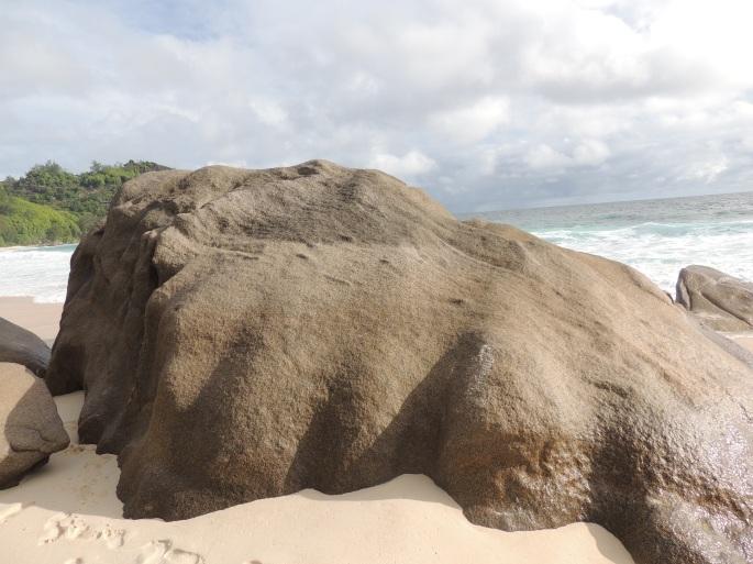 Intendence Beach (17)