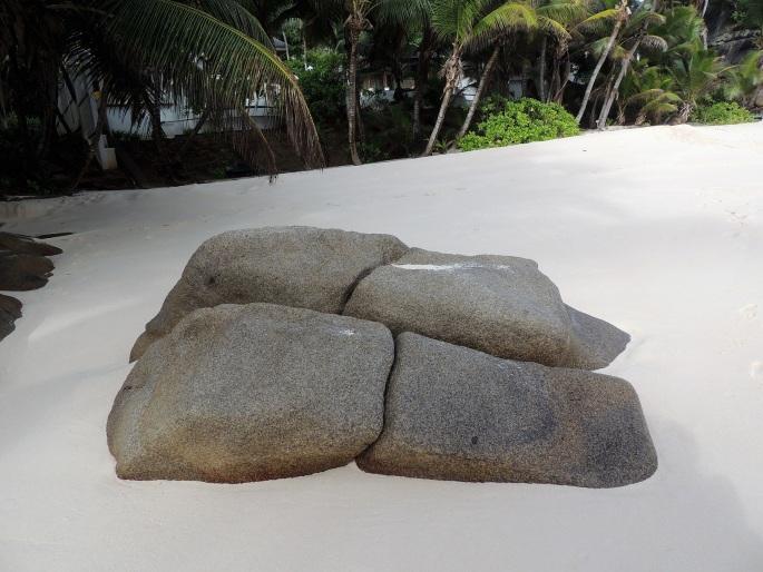 Intendence Beach (18)