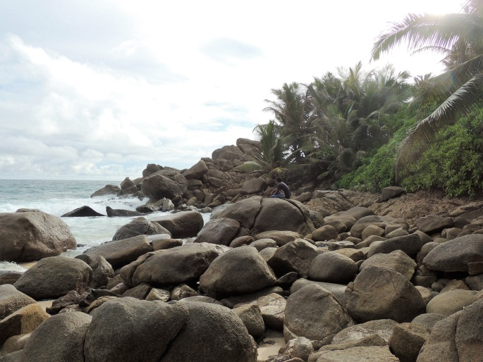 Intendence Beach (20)